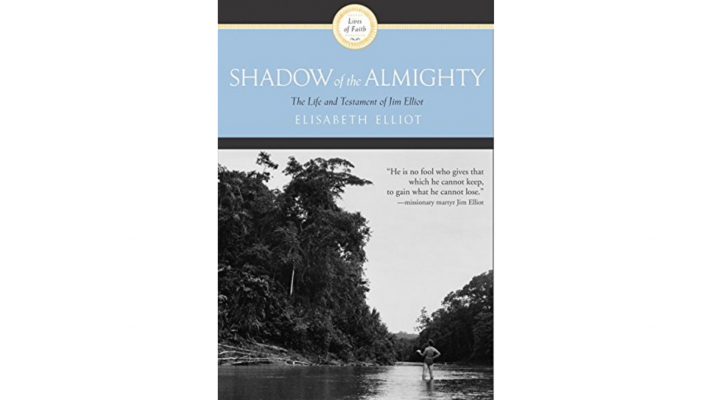 shadow of the ALMIGHTY new cover